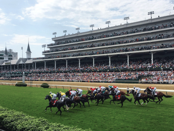 photo of turf race at Churchill Downs